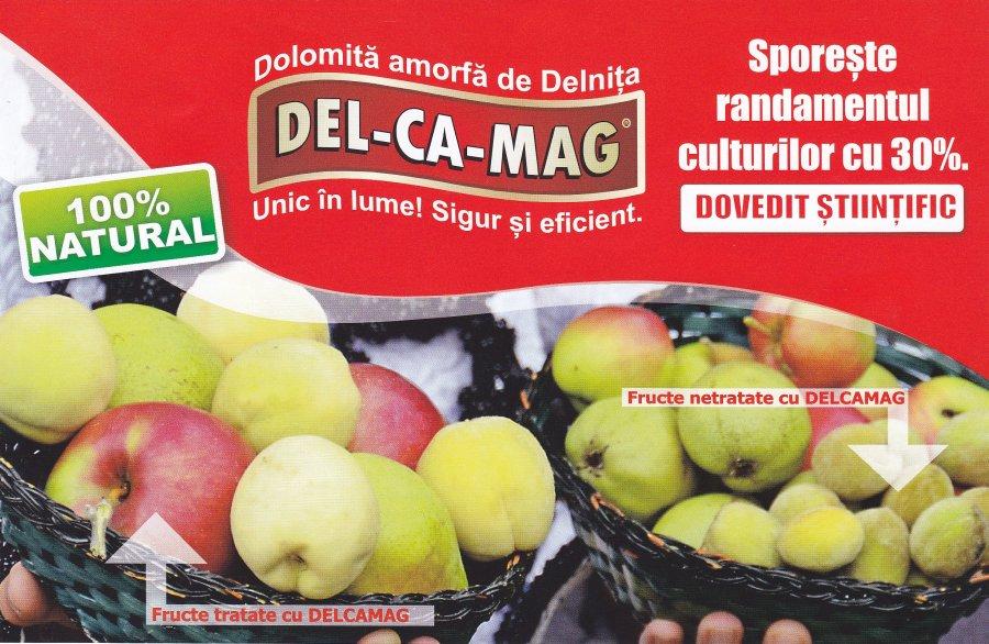 Vand delcamag del ca mag dolomita oferta bucuresti buzau for Ca mag