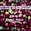 VAND MERE INDUSTRIALE  oferta Fructe