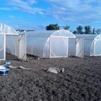 solar legume tunel oferta Diverse