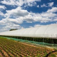 Folie profesionala solar oferta Ambalaje