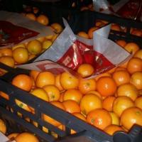 Vând clementine  oferta Fructe
