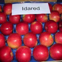 Mere; Golden, Gala, Ligol, Idared... oferta Fructe