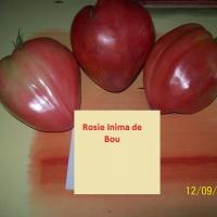 Seminte Romanesti - Seminte rosie - Inima de Bou- Plic = 20 Seminte oferta Seminte