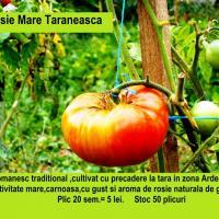SEMINTE ROMANESTI - Rosie Taraneasca- oferta Seminte