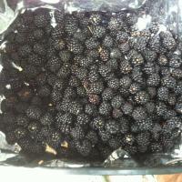 Vand mure soiul Thornfree oferta Fructe