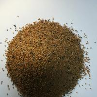 Vand boabe mustar cantitati mici si mari; corespunde si cu masura 4 APIA oferta Seminte