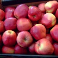 Vand mere 1,8 lei/ Kg oferta Fructe