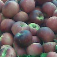 MERE DE BOGDANESTI oferta Fructe