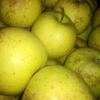Mere 80 de bani pe kg oferta Fructe
