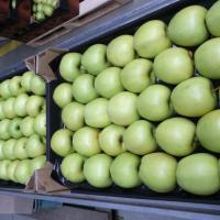 Mere din Polonia oferta Fructe