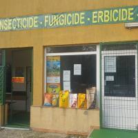 Fitofarmacie, Călărași, Belciugatele oferta Seminte