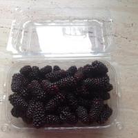 Mure de cultura  oferta Fructe
