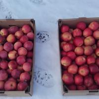 Vand mere calitatea I ROMANIA oferta Fructe