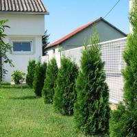 Tuia columnaris smaragd oferta Flori si plante ornamentale