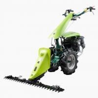 motocultor 6 cp Poza