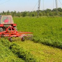 grebla rotativa oferta Utilaje agricole