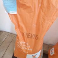 Samanta porumb KWS Kinemas  oferta Seminte