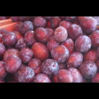 Vand prune de vara oferta Fructe