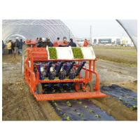 Folie mulcire biodegradabila Poza